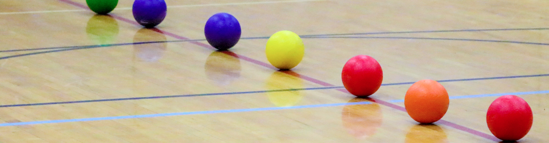 Adult-Sports-Header-Dodgeball-01